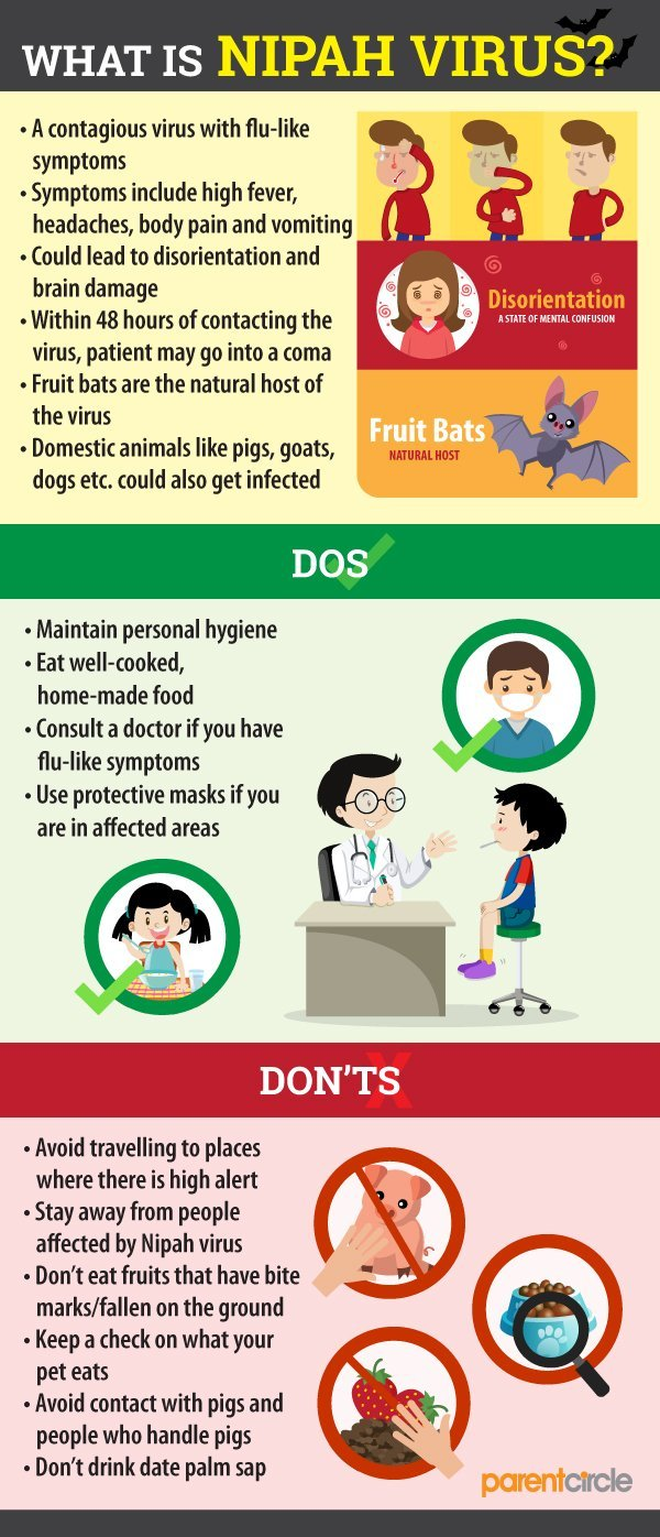 What Is Nipah Virus? All You Need To Know